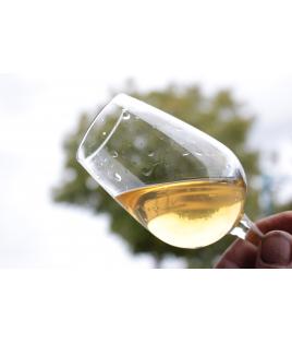 Vins Blancs du Monde